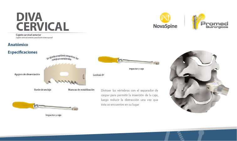 Sub menu Diva Cervical-01