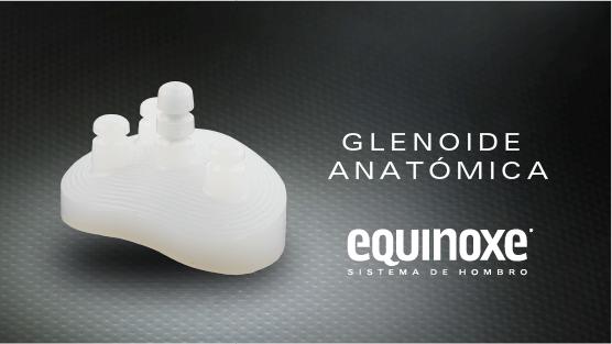 Sub Menu Glenoide Anatómica-02